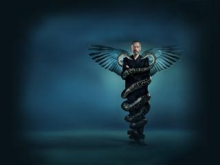 обои Доктор Хаус со змеями фото