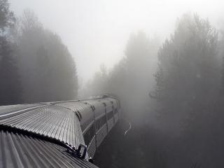 обои Поезд в тумане фото