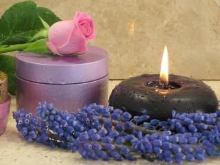 обои Косметика - Крема, свеча и роза фото
