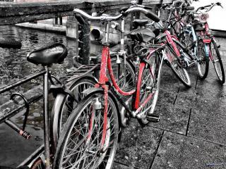 обои Велосипеды и дождь фото