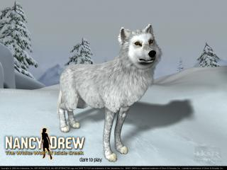 обои Nancy Drew: The White Wolf of Icicle Creek фото