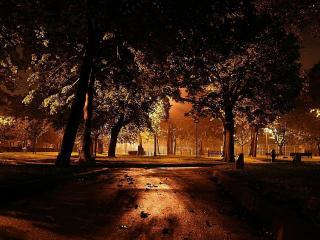обои Вечерний парк,  освещающий фонарями фото