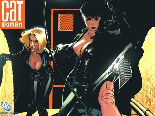 обои Catwoman comics фото