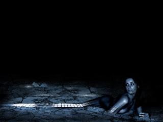 обои Desiccant night фото