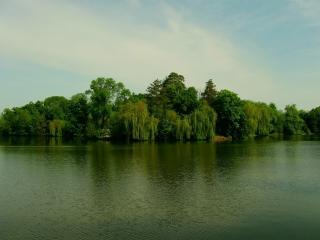 обои Зеленый остров фото