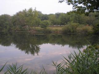 обои Берег реки фото