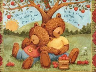 обои Медвежата фото