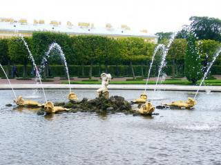 обои Дубовый фонтан фото