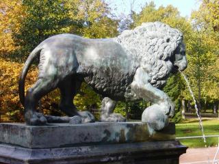обои Лев или львица фото