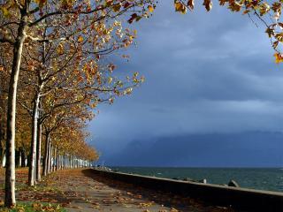обои Осень в заливе фото