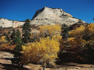 обои Осень в горах фото
