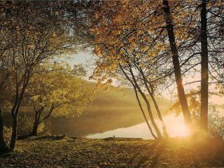 обои Осень на озере фото