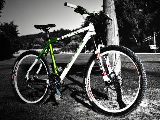 обои Велосипед UNIVEGA (wide scr) фото