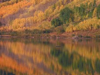 обои Осенняя спокойная река фото