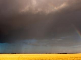 обои Небольшая туча поливает поле при свете радуги фото