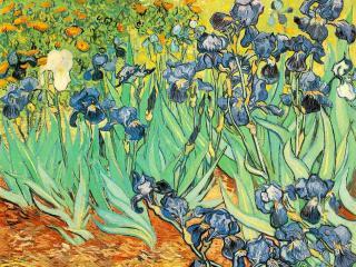 обои Ирисы (1889),  Винсент Ван Гог фото