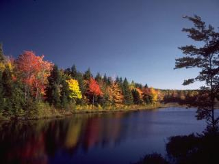 обои Осень над рекой фото
