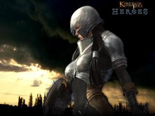 обои Kingdom Under Fire Heroes фото