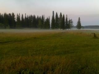 обои Туман растелившийся на лугах фото