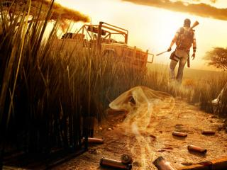 обои Games Far Cry 2 cartridges фото
