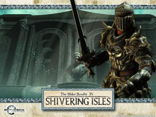 обои The Elder Scrolls IV - Shivering Isles фото