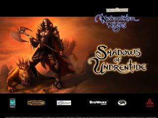 обои Neverwinter Nights - Shadows of Undrentide фото