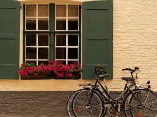 обои Велосипеды у окна с цветами фото