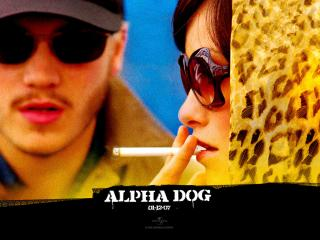 обои Alpha Dog фото
