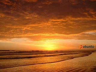 обои Летний закат фото