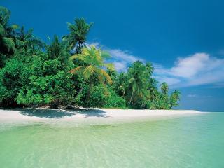 обои На берегу необитаемого острова фото
