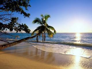 обои Обитаемый островок фото