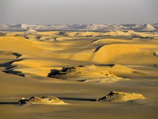 обои Оазис Зива в Египте фото