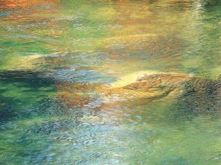 обои Водная рябь фото