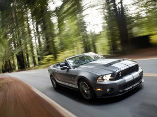 обои Shelby Mustang GT500 Convertible фото