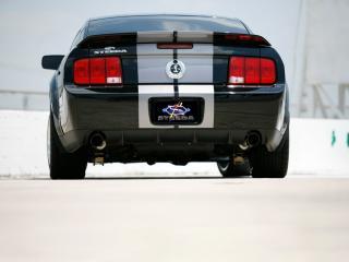 обои Shelby Mustang GT500 вид сзади фото