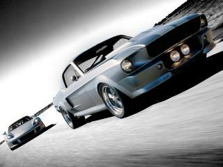 обои Shelby Mustang GT500 в движении фото