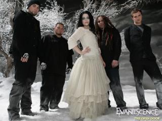 обои Evanescences  Amy Lee фото