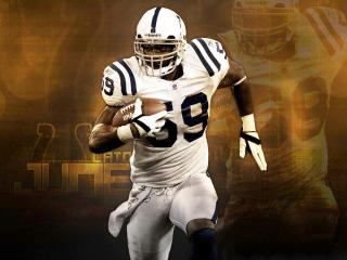 обои Indianapolis Colts фото