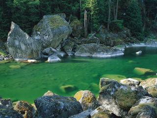 обои Зеленая вода фото