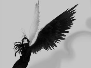 обои Девушка с крыльями фото