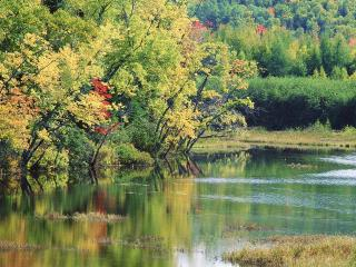 обои Излучина реки фото
