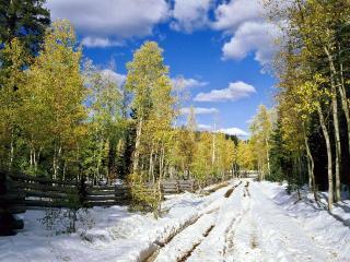 обои Ранняя зима в Юте фото