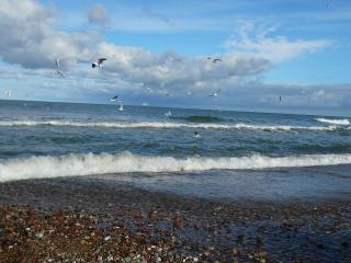 обои для рабочего стола: Балтийское море