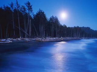 обои Ночное озеро фото