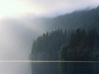 обои Озеро утром фото