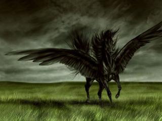 обои Конь тьмы фото