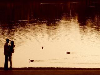 обои Влюблённые стоят рядом с озером фото