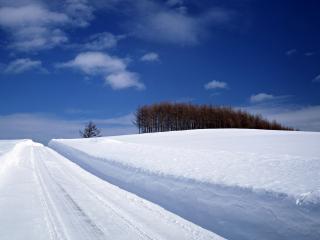 обои Снежная дорога фото