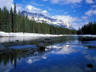обои Bow River and Castle Mountain фото
