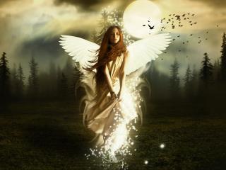 обои Ангел с белыми крыльями фото